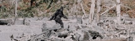 Patterson film Bigfoot